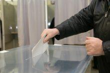 Savivaldos rinkimams užregistruota trečdaliu daugiau komitetų, nei 2015-aisiais