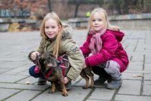 Bosiuko kelias iš Vilniaus tiesiai į penkias širdis