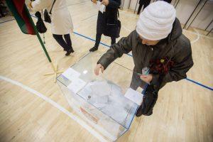 Prezidentės patarėjas: elektroninio balsavimo šalininkai turėtų susimąstyti