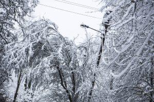 Elektros vis dar neturi maždaug 4,5 tūkst. vartotojų