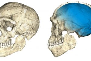 Maroke rastos fosilijos šiuolaikinius žmones pasendino 100 tūkst. metų