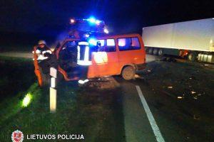 Tragiška kaktomuša su vilkiku: vairuotojas neišgyveno