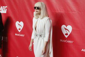 Lady Gagai filmuojantis vaizdo klipe įkando gyvūnas