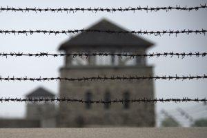 Prieš Mauthauzeno nacių koncentracijos stovyklos tinklalapį – kibernetinė ataka