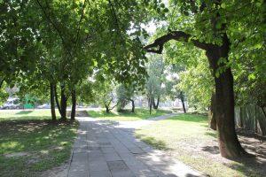 M. K. Čiurlionio gatvėje Naujamiestyje – nauja žalia erdvė