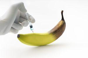 Kada genetiškai modifikuotas obuolys nelaikomas genetiškai modifikuotu?