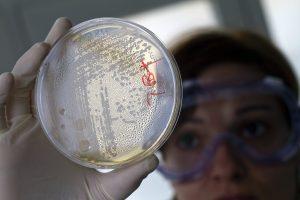 Posūkis medicinoje: atsparias bakterijas naikins superantibiotiku