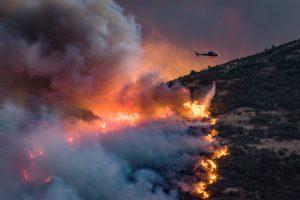 Naujojoje Zelandijoje miškų gaisrai niokojo namus