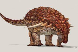 Kanadoje rastas prieš 110 mln. metų gyvenęs dinozauras jau turi vardą