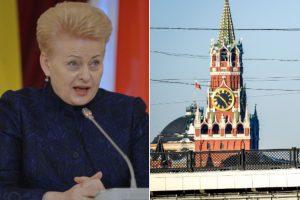 Prezidentūros atsakas Kremliui: uodui įkandus taip pat skauda