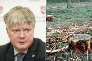 Aplinkos ministras pristatė planą, kaip žada riboti miškų kirtimus