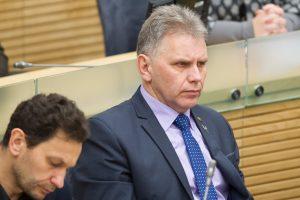 Per metus Seimo Konstitucijos komisija surengė tik vieną posėdį