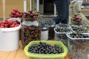 Lietuviškos trešnės ir vyšnios – tik turguje