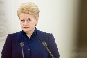 D. Grybauskaitė: ne karo metas, mokesčių keisti nereikia