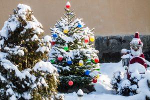 Kokių orų galime tikėtis šiemet per Kalėdas?