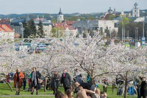 Vilnius pirmauja tarp ES sostinių: turistams siūlo bene mažiausias kainas