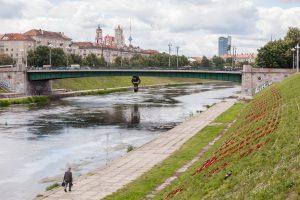 Kuo stebins atsinaujinantis Žaliasis tiltas?