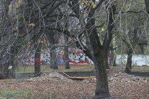 Ypatingas radinys: Vilniuje archeologai aptiko mistinės bažnyčios pamatus