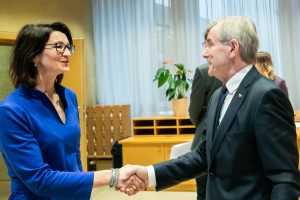 D. Henke: lietuviams trūksta informacijos, ką duos referendumas