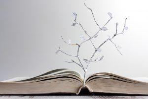 Poezijos rašymo prasmės dėžutės ir giraitės (knygų apžvalga)