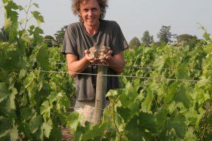 30 tūkst. eurų už vyną – vėjais paleisti pinigai ar investicija?