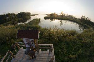 Regioniniam parkui ieško vadovo