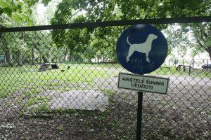 Užkliuvo lėšos šunų gerovei