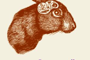 Žiurkės gailisi savo poelgių, o šarkos – neištikimos. Ar žinojote? (knygos apžvalga)
