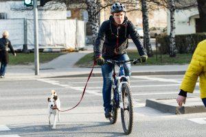 Apklausa: reguliariai sportuoja mažiau nei pusė lietuvių