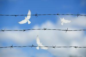Septynios amnestijos Lietuvoje – tūkstančiai atleistųjų nuo bausmės (apžvalga)