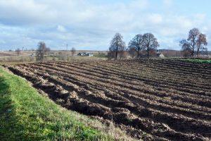 Raseinių rajone ilgapirščiai nugvelbė senolio 17 tūkst. eurų vertės mėšlo kratytuvą