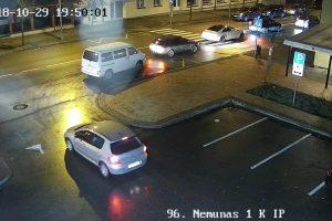Užfiksuota baisi šuns mirtis pėsčiųjų perėjoje: vairuotoja nė nesustojo