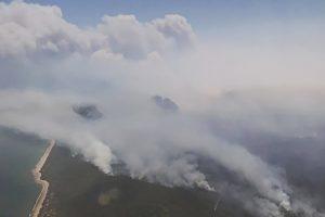 Rytinėje Australijos pakrantėje siaučia dideli miško gaisrai