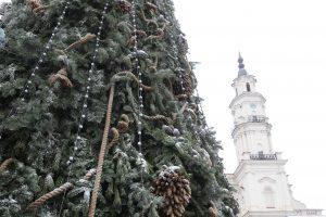 Kauno Kalėdos už pusę milijono eurų