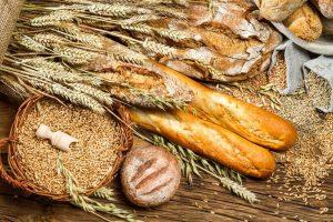 Kokia duonos nauda žmogui?