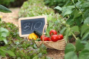 Ekologiniai ūkiai liks be išmokų