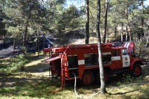 Prieš teismą stos Kuršių nerijos miško padegimu kaltinamas aštuoniolikmetis