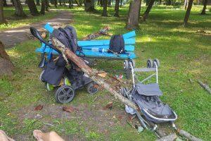 Per plauką nuo tragedijos: į Vytauto parko spąstus pateko šilainiškių šeima