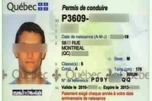 Pareigūnams įkliuvo teisių klastotę pateikęs kanadietis