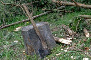Per konfliktą Rokiškio rajone kirviu aptalžė ir sugyventinę