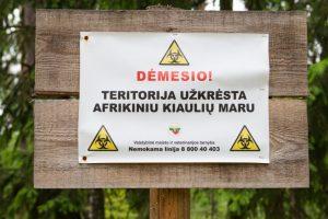 Bauginanti prognozė: tik laiko klausimas, kada kiaulių maras apims visą Lietuvą