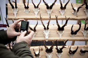 Vagis priviliojo gyvūnų ragų kolekcija ir elektrinė plytelė
