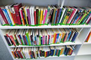 Kuo skiriasi frankofonijos ir prancūzų literatūra?