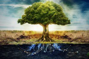 """Prancūzijoje išdygo """"elektroninis medis"""""""