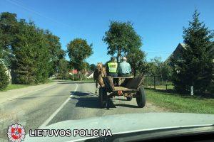 Policininkei teko vadelioti pažeidėjo arklį