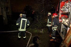 Švenčionių rajone per gaisrą žuvo vyras
