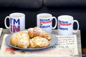 """TVF perspėja dėl """"Brexit"""", V. Putinas D. Cameroną kaltina ES šantažu"""