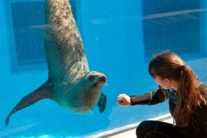 Jūrų muziejus įžiebs mokslo ir žinių švyturį