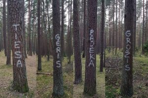Terliai nusitaikė į medžius