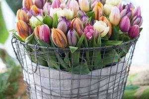 Kaip nesugadinti skintų gėlių grožio?